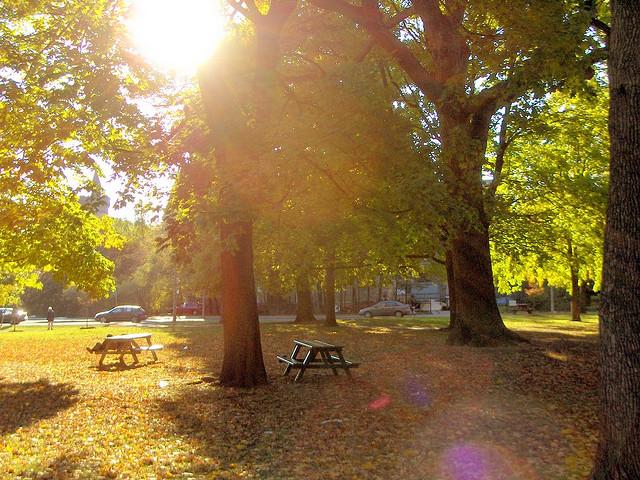 Queens Park by bgillard