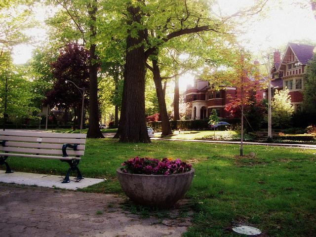 Rosendale houses