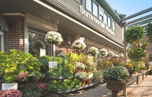 Summerhill market 1