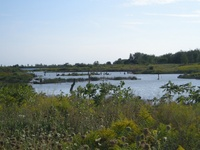 Tommy Thompson Park by Neal Jennings