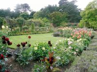 Old English Garden by Sue Hasker
