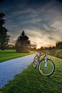 Park Ride by Benson Kua