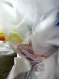 Abstract View of a Plastic Bag by Sean McMenemy