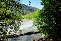 Chilkoot Trail by Kimberly Vardeman