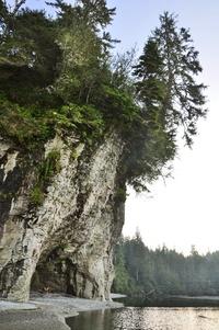 West Coast Trail by Paula Reedyk