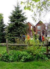 Garden in Toronto by Madimem43