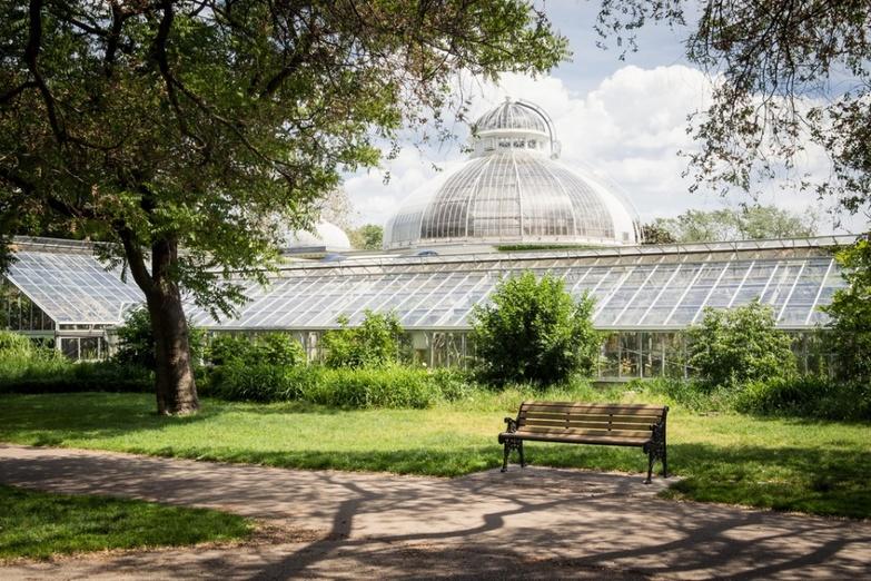 Allan gardens greenhouses