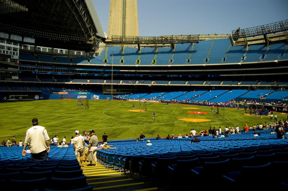 Toronto Blue Jays by Matt Nazarenko