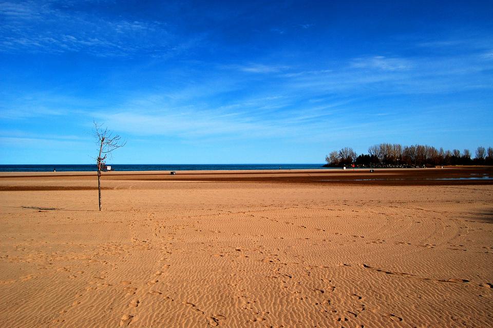 Woodbine Beach by John Vetterli
