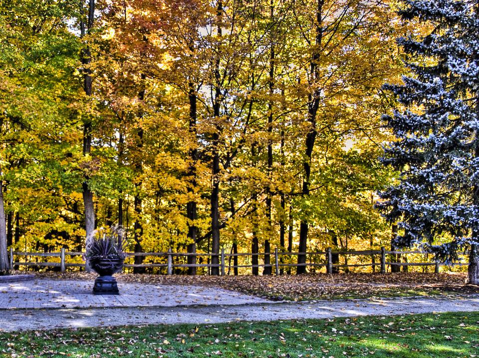 Toronto Autumn by RC Fotos