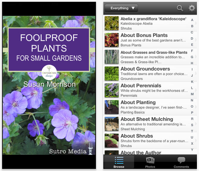 Foolproof Plants for Small Gardens
