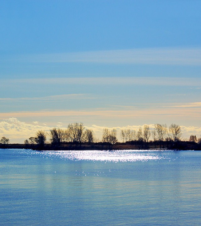 Photo of the Week: One Bright December Afternoon