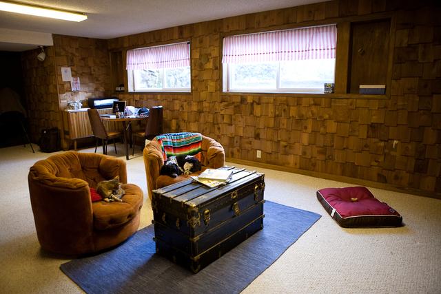 Living Room by Deann Barrera