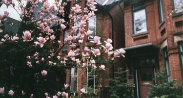Toronto Still Ending Short on Listings in March