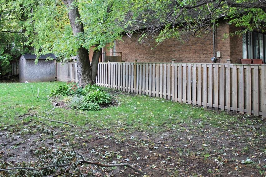 backyard 5