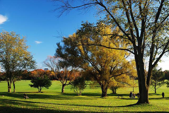 Sunnybrook Park by shanminxu