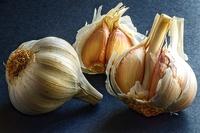 Garlic by Felipe Gabaldn