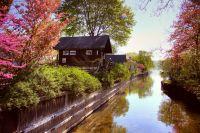 Cottage by Alex