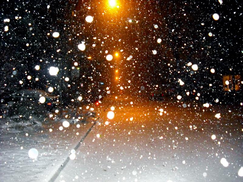 Snowfall by Amber Dawn Pullin