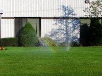 Lawn by Michael Gil