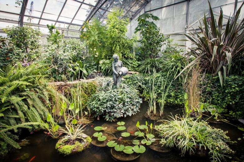 Toronto botanical gardens pond