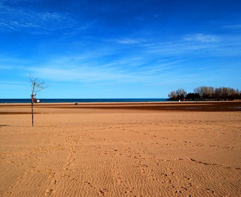 Photo of The Week – Woodbine Beach