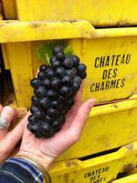 Chteau des Charmes 1