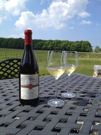 Chardonay by Hidden Bench Vineyards Winery