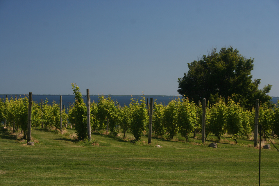 Prince Edward County by Bobolink