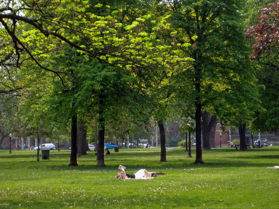 Relax in The Park by Gary J  Wood