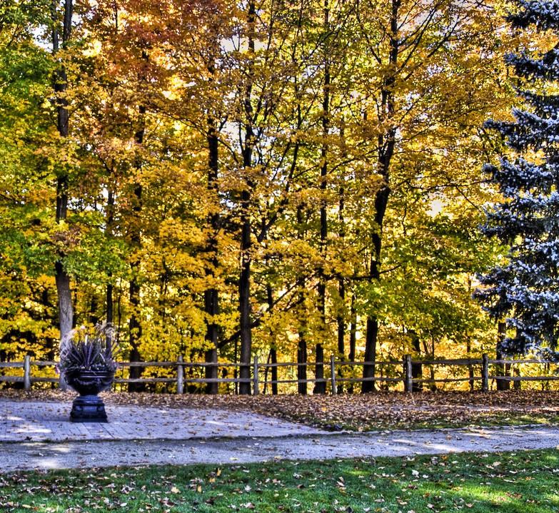 Photo of The Week – Toronto Autumn