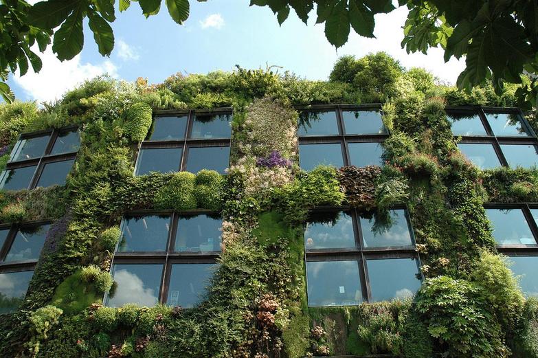 Vertical Garden By snoeziesterre