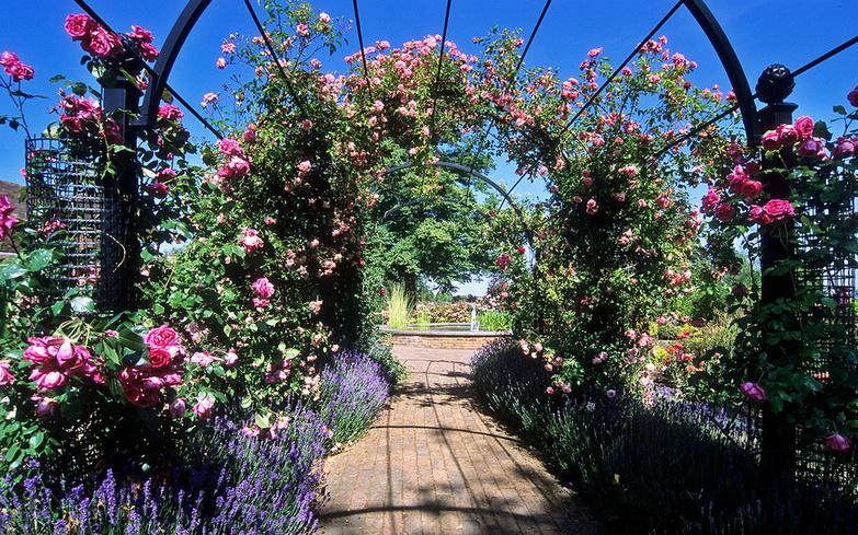 Beautiful Garden By ukgardenphotos