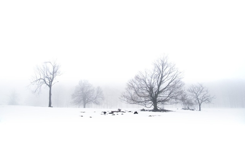 Snowy and Fog by John Ryan