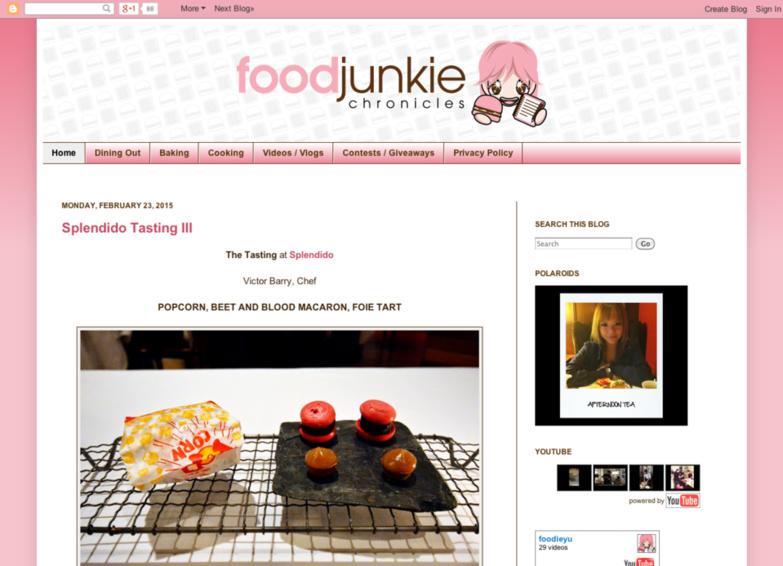 Foodjunkie Chronicles