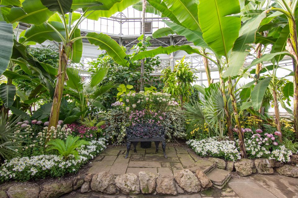 4 - Indoor Garden