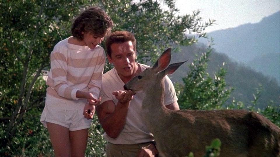 Arnold Schwarzenegger in Comando would not be a good neighbour