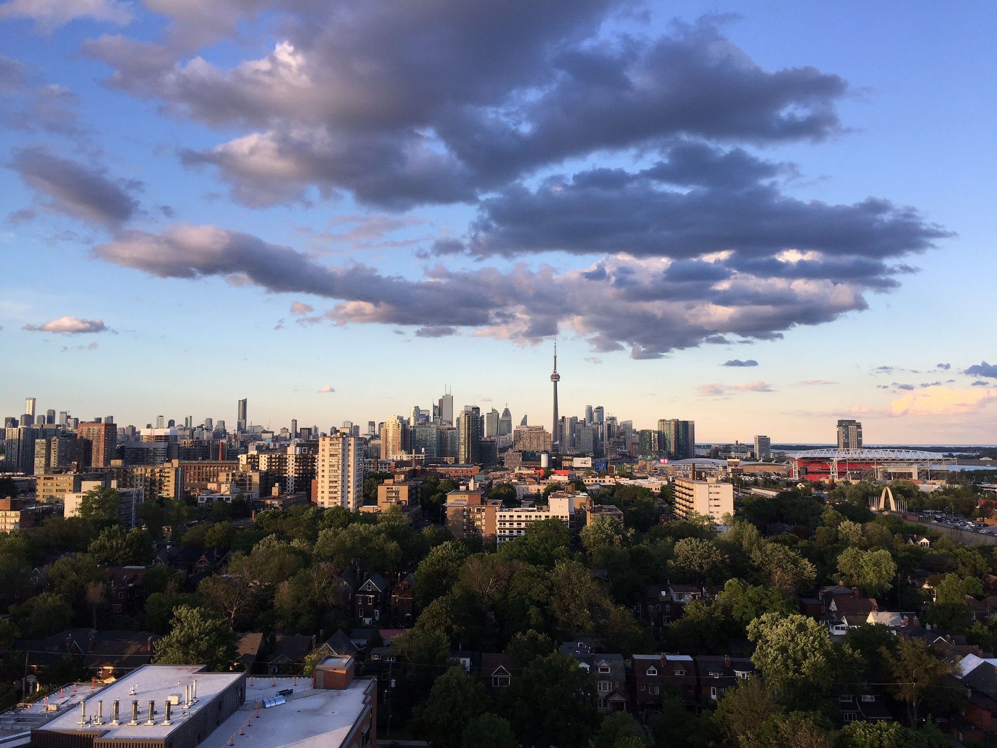 Toronto by amber dawn pullin