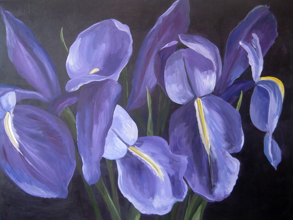 Irises (Oil and Acrylic on Canvas) by  Susanne Langlois