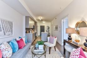 105 george street, suite 607 19