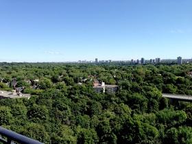 ravine view